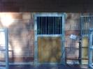 drzwi stajenne